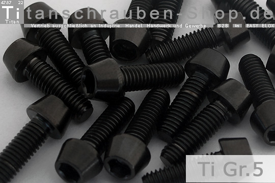 Titan M5x45 Schraube Ti DIN 912 konisch Innensechskant Bolt natur